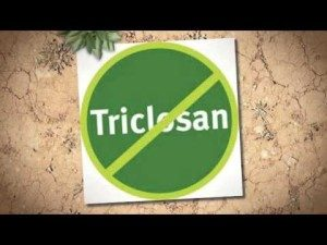Triclosan distress to liver