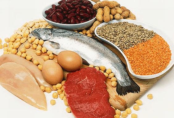protein blood sugar levels