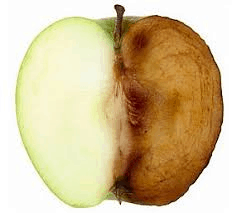 apple analogy to demonstrate the effectiveness of free radicals