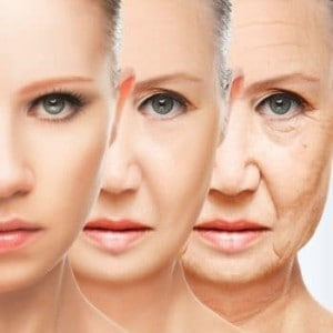 Antioxidants The Key to the Fountain of Youth