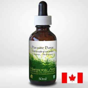 Parasite purge elixir purging parasites
